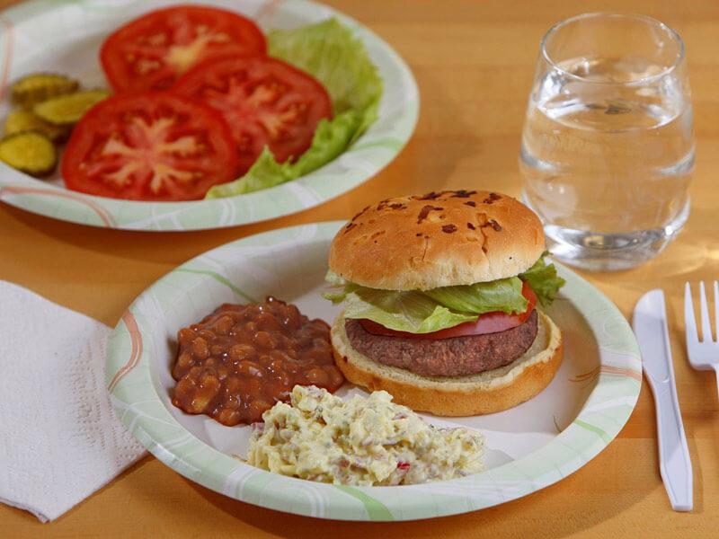 Basic Dining Plates